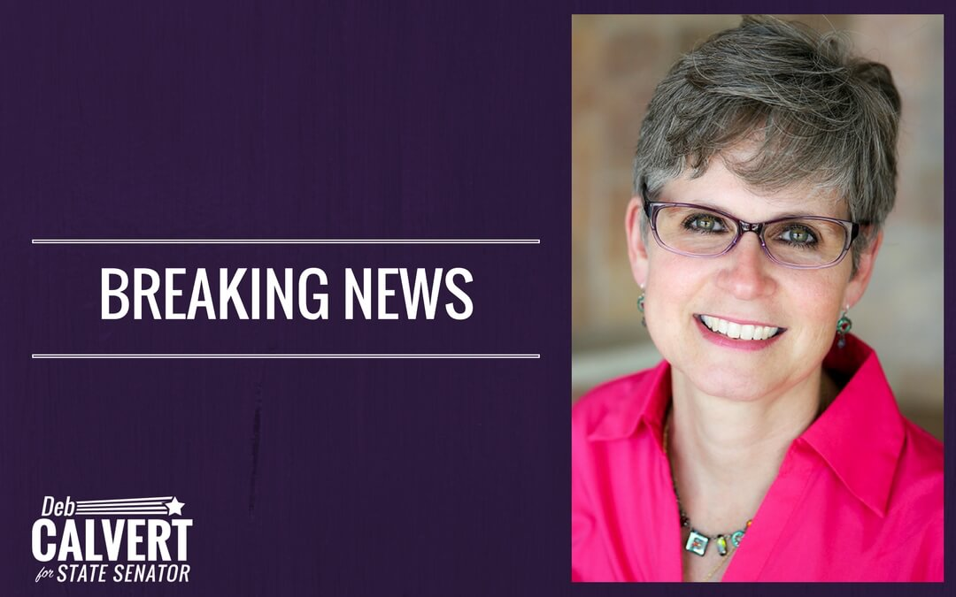 Deb Calvert Endorsed by Minnetonka Mayor Terry Schneider
